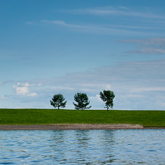 three (Thomas Leth-Olsen) Tags: trees three minimal repetition hamar locations mjoesa