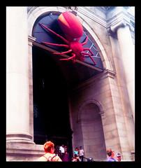Giant Spider, Central Park West, New York City (JFGryphon) Tags: newyorkcity newyork promotion americanmuseumofnaturalhistory centralparkwest giantspider spidersaliveexhibit