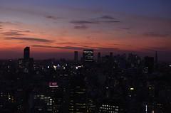 Shinjuku at sunset (keiko.com) Tags: city sunset sky cloud building japan tokyo evening nikon shinjuku cityscape    d7000 gettyimagesjapan12q3