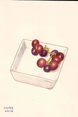 grapes (sarabeee) Tags: red stilllife food pencil sketch purple natural drawing grapes colouredpencil