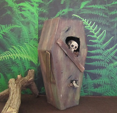 Miniature Aged Coffin with Skeleton Coming Out of Coffin Lid~1:12th Scale (Enchanticals ~I'm Coming Back) Tags: wood b