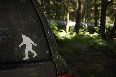 For Someone (Robert Drozda) Tags: washington decal bigfoot sasquatch mtbakernationalforest drozda sasquahtchisafriend