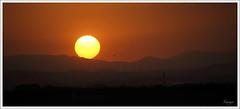 El Rey Sol (Carmen Pla) Tags: sol valencia atardecer colores cielos carmen albufera elpalmar tonalidades marjal