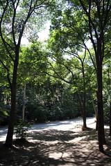 Chehlmir -Tandooreh park/ -   (P A H L A V A N) Tags: sina    dargaz  pahlavan   chehelmir