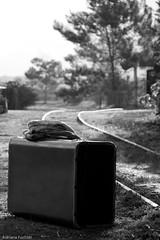 af1208_7583 (Adriana Fchter) Tags: old travel bw southwest detail metal brasil architecture canon rust iron maria kunst wroughtiron rusty hampshire artnouveau viajes gaud architektur vehicle museo grille ironwork oviedo trem esperando roussillon fentre mala despedida brincando detalhe comboio ferro pensando tradicional hierro orientales trilhos sudouest hants partida ferreiro ferronnerie forjado lenco bleumarie