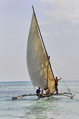 boat sail zanzibar dhow outrigger