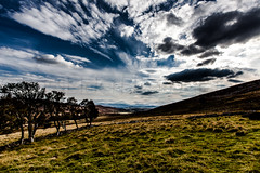 The Highlands (RossElder) Tags: blue light shadow sky cloud sun detail grass clouds canon dark skyscape landscape scotland highlands shadows cloudy dramatic clarity scottish sunny bluesky highlights highland 5d epic highlight lightroom grassy markii mark2 canon5dmark2 5dmark2 lightroom4