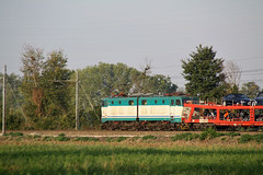 Stranieri 2 - Mauri 0 (Maurizio Zanella) Tags: italia trains db railways aw fs alessandria trenitalia treni autozug ferrovie autoslaaptrein e656 eetc pontecurone e656552 e656570 arenaways