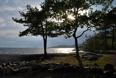 Sunshine through the clouds (Mwap38) Tags: trees sea sun tree nature water sunshine clouds rocks stones shore gras archipelago yourbestoftoday