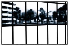 Enferm dehors (Gabi Monnier) Tags: famille bw france canon flickr nb jour provence abstrait laciotat hivers trame provencealpesctedazur exterieur canoneos600d gabimonnier