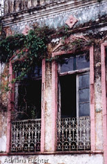 6877 30 (Adriana Fchter) Tags: santa pink verde history window brasil ventana puerta francisco monumento vista janela sao mirada catarina historia sul janelas pltano historico casarios