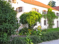 Burghausen / Castle Homes 0007 (Mr.J.Martin) Tags: carnival castle bayern bavaria austria gothic medieval fortification fortress middleages burghausen salzach burgfest salzachriver wittelsbachs burghausencastle