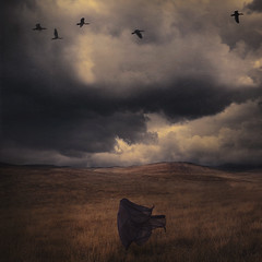 wind rider (brookeshaden) Tags: storm field birds clouds dark darkness wind figure behindthescenes windrider fineartphotography cloaked brookeshaden