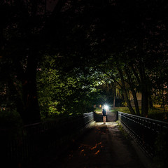 28|52 (olha.mykhalska) Tags: park longexposure nightphotography bridge trees sky color green girl night hair lights alone darkness outdoor space magic ghost lviv psycho soul serene sity blackdress lightdrawing 52week 52weekproject nightaddiction mykhalskaph