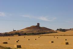 Montes Torozos (jorge.cancela) Tags: montes torozos castilla y leon valladolid espaa spain europa europe fields campo