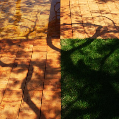 =Composition-95The geometric division and organic shadows (kouichi_zen) Tags: wood geometry water shadow nature architecture green ground