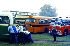 Slide 070-51 (Steve Guess) Tags: woburn abbey showbus rally bus coach historic vintage vehilces bucks buckinghamshire england gb uk pushing bristol ls ecw mud slope aec swift rear cardiff tappins midland red bmmo showerbus