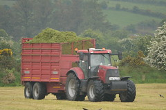 Case IH Puma 160 Tractor with a Redrock Silage Trailer (Shane Casey CK25) Tags: case ih puma 160 tractor redrock silage trailer cnh casenewholland red pit clamp mitchelstown silage16 silage2016 grass grass16 grass2016 winter feed fodder county cork ireland irish farm farmer farming agri agriculture contractor field ground soil earth cows cattle work working horse power horsepower hp pull pulling cut cutting crop lifting machine machinery nikon d7100 tracteur traktori traktor trekker trator cignik crops collecting collect