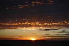 DSC05176 (The Man-Machine) Tags: sky dusk clouds sun
