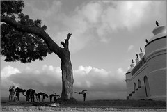 stretching, deolali (nevil zaveri (thank you for 10 million+ views :)) Tags: zaveri people deolali nashik maharashtra india photography photographer images photos blog stockimages photograph photographs nevil nevilzaveri stock photo mosque islamic architecture exterior monochrome blackandwhite bw trees trainer army man men guide teacher students fitness training trainee young boys landscape warmup exercise clouds skyscape sky