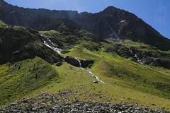 Cascatelle (lightsaber*) Tags: green valle aurina falls fall grass rock mountain montagna alto adige altoadige sudtirol cascate cascata water landscape mountainscape italy italia summer hike hiking