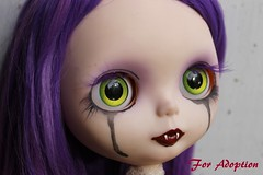 blythe eyes (Dusk~) Tags: blythe ooak custom doll vampire purple eye lids chips dress bear box outside piparrot reroot adoption