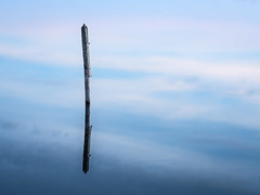 Analysis (Damian_Ward) Tags: damianward photography ©damianward reflections hertfordshire measure reservoir