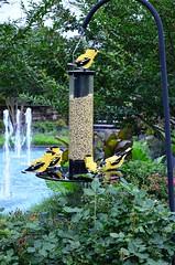Lego Finches (pjpink) Tags: legos buildingblocks plastic sculpture lewisginterbotanicalgardens lewisginter lewisginterbotanicalgarden gardens northside rva richmond virginia july 2016 summer pjpink