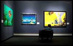 The Art Critic (zweiblumen) Tags: rogerdean islandsandbridges manxmuseum art paintings douglas doolish isleofman ellanvannin canoneos50d polariser zweiblumen photoshopcs4