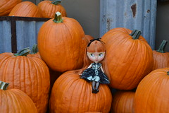 Fall Fun in Early September