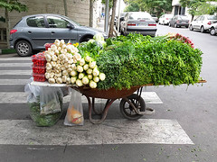 Sabzi on Wheelbarrow (Kombizz) Tags: 111009 kombizz tehran iran 2016 1394 mobilephonetaking mobilephonecapture streetseller sabzikhordan freshherbs sabzi sabzionwheelbarrow wheelbarrow rustywheelbarrow tomato seer plasticbags tarkhun shanbalileh geshniz gishniz marzeh tareh persianherbs shahi sheved sabziforoosh kahoo jafary basil cilantro cress dill fenugreek parsley tarragon radish tarbocheh zebracrossing parkedcars