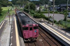 20120816-Takeno-Nekozaki-1