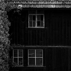 Mein Nachbar hat ein schnes Haus - My neighbour has a beautiful house (Manuela Salzinger) Tags: windows house broken fenster haus kaputt