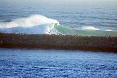 DSC05929 (palmtreeman) Tags: sea seascape beach water weather birds surf waves surfing beaches wedge bodyboarding skimming bodysurfing