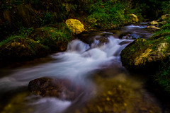 Dambovicioara in slow motion #3 (Go 4 IT) Tags: mountains green water nikon outdoor romania slowmotion longexposer arges bestcapturesaoi d3100 evghenitirulnic
