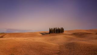 120909_045_Toscana