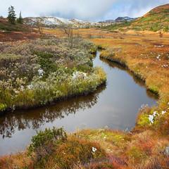 Fuji Creek (Krogen) Tags: nature norway landscape norge natur norwegen noruega scandinavia krogen landskap noorwegen noreg skandinavia oppland synnfjellet nordreland fujifilmx10