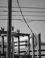 looping organic (Star, LaikazEyes: zazzle.com) Tags: street sky blackandwhite bw blancoynegro electric buildings construction downtown tucson loop telephone az structure bn pole cables dsc06942 laikazeyes