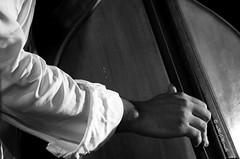"""della serie """"LE MANI NEL JAZZ"""" ...  2 / 15 (Maria Grazia Marrulli) Tags: italia puglia taranto faggiano sancrispieri eventi joniojazzfestival12 musica jazz jazzquartetandveryspecialguestjerrybergonzi lucaalemanno estate strumentimusicali doublebass persone uomo man l'homme musicista mani notturno biancoenero inmovimento circolomicromosso travel viaggio"""