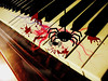 will you play a tune....? (delitefulimage) Tags: vacation holiday insect spider interesting blood piano ivory delitefulimage