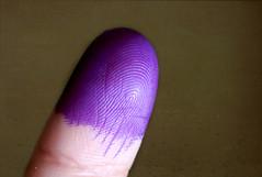 Yo si voté (Haydelis) Tags: canon venezuela caracas 2012 elecciones voto votar week40 522012 52weeksthe2012edition weekofseptember30