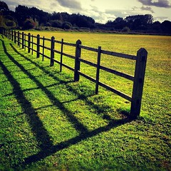 wood uk light shadow england green grass mobile... (Photo: Мaistora on Flickr)