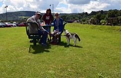 Monmouth Picnic Time (Jainbow) Tags: monmouth jainbow monnow park grass picnic lina family collie cross dog rescue