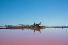Salinas. (Azariel01) Tags: 2016 espagne españa spain murcia sanpedrodelpinatar salinas maraissalant sel salt rouge red lake lac bluesky cielbleu contraste contrast panorama reflet reflection parque natural park parc naturel saltmarches
