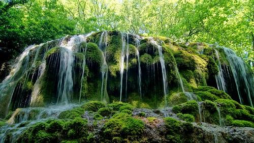 Parc de Saint Pons-Provence-France