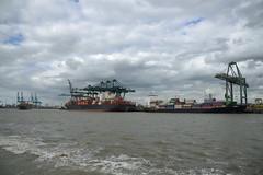PSA Europa Terminal DST_7812 (larry_antwerp) Tags: port        belgium belgi          schip ship vessel        schelde        eilbek csavtoconao 9627899 9313199 valdivia 9333395