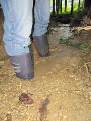 130 (tomtom1890) Tags: gummistiefel gummi stiefel botas stvlar regenstiefel stivali boots rainboot wellies