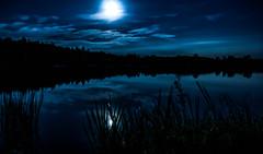 moonlight-serenade (Florian Grundstein) Tags: moon moonlight mood water reflection clouds landscape trees wallpaper mft olympus omdem1 lake see teulitz alterweiher island insel mond vollmond longtimeexposure longexposure nature naturallight