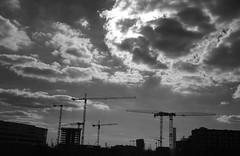 Kräne - Cranes (greenoid) Tags: kran kräne crane cranes hafencity hamburg gegenlicht wolken clouds build bauen building house haus sw bw