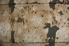 316816_10150431066825828_1720715993_n (brittanycontratto) Tags: indoor wallpaper stenciling drawing flower flowers pink tear worn historic historichouse dirty old peeling victorian 1850 1860